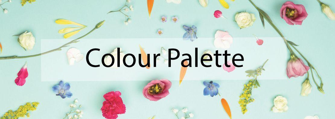 Colour-Palette-compressor