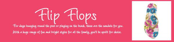 What are Flip Flops?