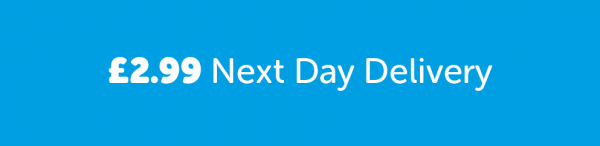 Next-Day-Delivery2-993x241[1]