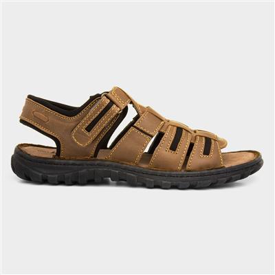 Doyle Mens Brown Touch Fasten Sport Sandal